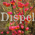 Dispel [Zine] (@dispel) Avatar