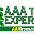 AAA Tree Experts, Inc (@aaatreecharlotte) Avatar