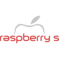 Raspberry solution company limited (@raspberry01) Avatar