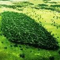 Biodiversidad Natural (@biodiversidad) Avatar