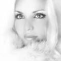 Tara (@zokawase1970) Avatar