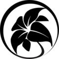 VoxnClothing (@voxnclothing) Avatar