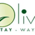 Olives Homestay (@oliveshomestay) Avatar