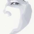 @nguyenho Avatar