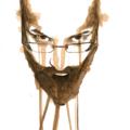 Juan Sebast (@juancho-1275) Avatar