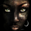 @brunosilvestre Avatar