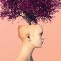 Namh Kheem (@namhkheem) Avatar