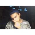 Giovanni Lo Sauro (@giovannilosauro) Avatar