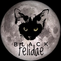 BLACK FELIDAE by Nicole (@blackfelidae) Avatar