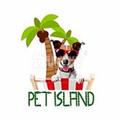 Pet Island (@petisland) Avatar