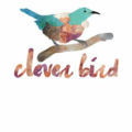clever bird (@cleverbirdclothing) Avatar