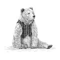 Dapper Mr Bear - Sheree (@dappermrbear) Avatar