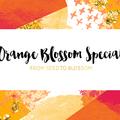 Orange Blossom Special (@orangeblossomspecial805) Avatar