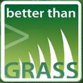 Artificial grass (@betterthangrass) Avatar