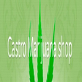 Castro Marijuana (@castromarijuana) Avatar