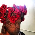 Marisa Demarco (@papermarisa) Avatar