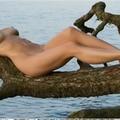 (@nicolegiepomarent) Avatar