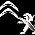 Team PSA (@teampsa) Avatar