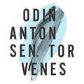 Odin Antonsen Torvenes (@odinantonsen) Avatar