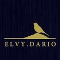 ELVYDARIO (@elvydario) Avatar