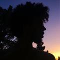 Benji Blow (@benjiblow) Avatar