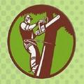 Tree Surgeon Gloucester (@treesurgeonuk) Avatar