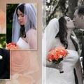 Professional Wedding Photography & Videography (@professionalwedding9) Avatar
