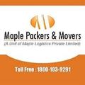 Maple Packe (@maplepackers64) Avatar