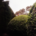 Josiah Atkins (@josiahatkins) Avatar
