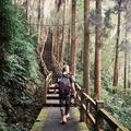 Lasda Wang (@lasda) Avatar