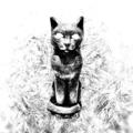 Are Cats Gay (@arecatsgay) Avatar