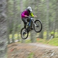 Dh Woods (@dhwoods) Avatar