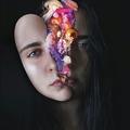 Alba Stark (@albastark) Avatar