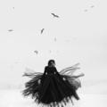 Anna Bruce (@adbrucephotos) Avatar