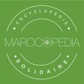 Marocopedi (@marocopedia) Avatar