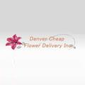 Same Day Flower Delivery Denver (@samedayflowerdeliverydenver) Avatar