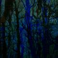 artemitsi (@artemitsi) Avatar