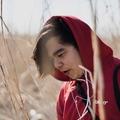 miyashiro kenji (@miyashirokenji) Avatar