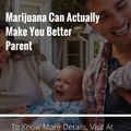 Marijuana vancouver (@marijuanavancouver) Avatar