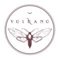 Volkano (@volkano-art) Avatar