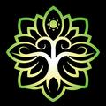 SOL Vision (@solvision) Avatar