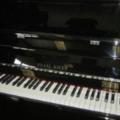 Pianos Direct Australia (@pianosdirectaustralia) Avatar