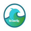 Web Classic Blog (@webclassicblog) Avatar