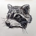 Pepper Raccoon (@pepperraccoon) Avatar