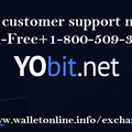 Yobit Support Number (@yobitsupport) Avatar