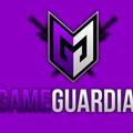 (@thegameguard1ian) Avatar