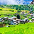 nepal tour (@tourpackagefornepal1) Avatar
