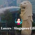 (@singaporelioncitylovers) Avatar