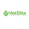 Viet Elite (@vietelite) Avatar