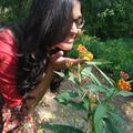 Priyusha (@priyusha) Avatar